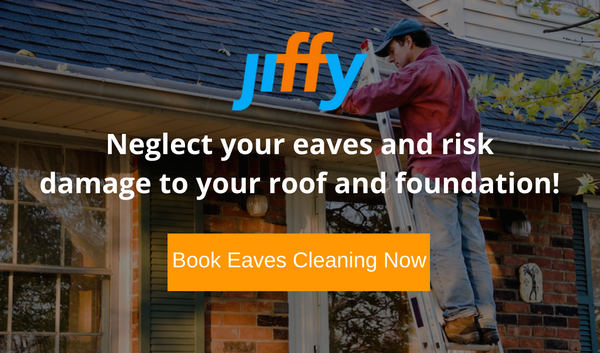 Clean your eaves or risk damage to your roof or foundation