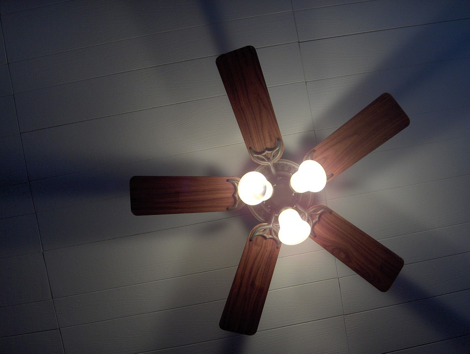 Reverse the direction of your ceiling fan