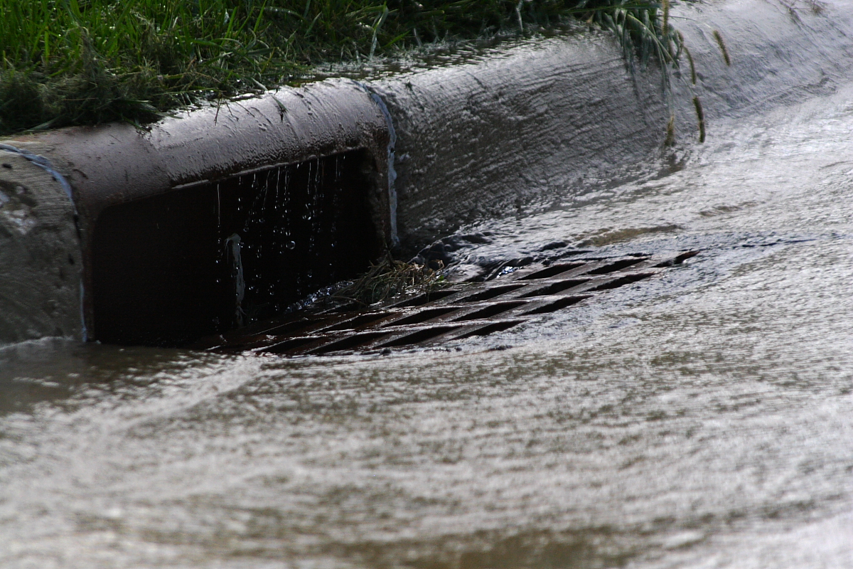Regularly check your nearest storm drain to make sure it's clear of debris
