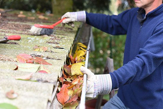 Fall Home Maintenance and Improvement